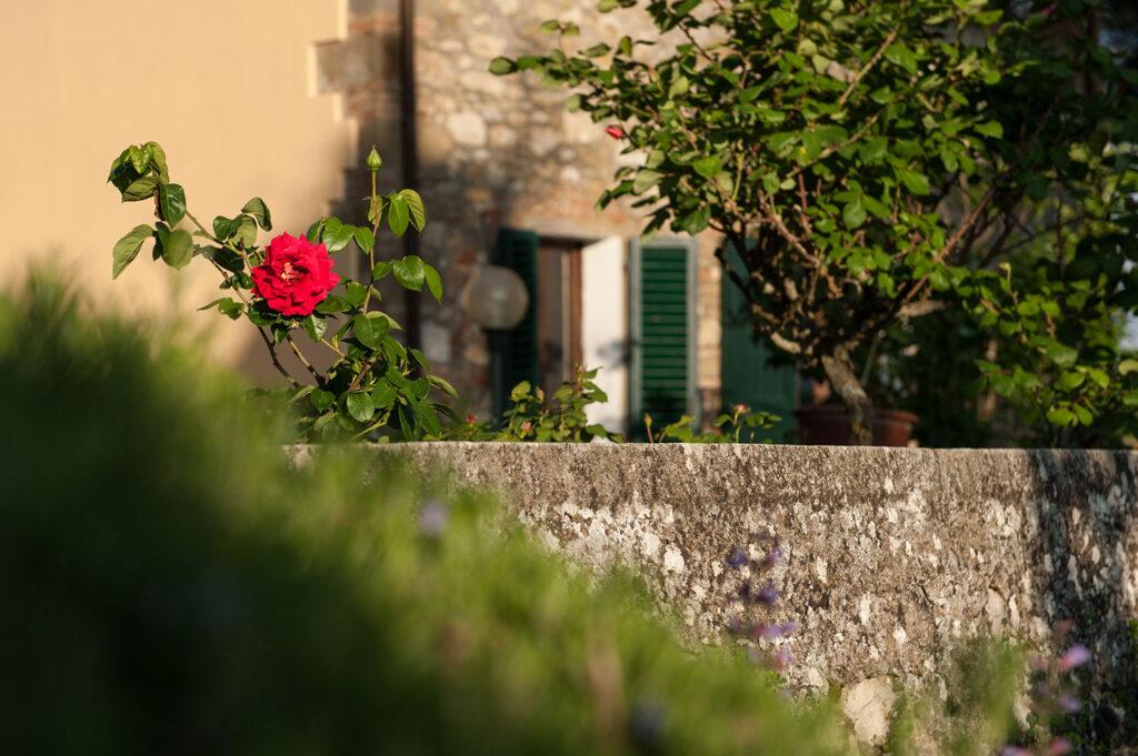 Villa_Giusterna-outside (4)